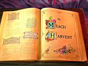 The Meach Harvest Cartoon Picture