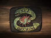 Sea Urchins Cartoon Picture