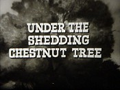 Under The Shedding Chestnut Tree Cartoon Picture