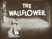 The Wallflower Cartoon Picture
