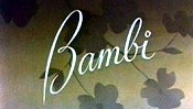 Bambi The Cartoon Pictures
