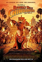 Beverly Hills Chihuahua Cartoon Picture