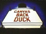 Canvas Back Duck Free Cartoon Pictures