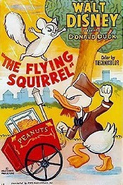 The Flying Squirrel Cartoon Funny Pictures