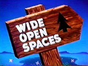 Wide Open Spaces The Cartoon Pictures