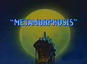 Metamorphosis The Cartoon Pictures