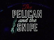 The Pelican And The Snipe Cartoon Picture