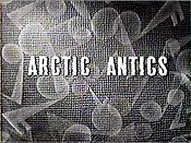 Arctic Antics Picture Into Cartoon