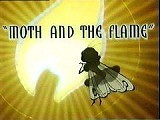 Moth And The Flame Cartoon Picture