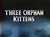 Three Orphan Kittens Cartoon Picture
