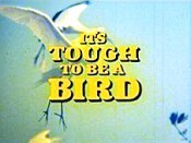 It's Tough To Be A Bird Cartoon Picture