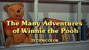 The Many Adventures Of Winnie The Pooh Cartoon Character Picture