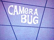 Camera Bug Picture Into Cartoon