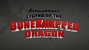 Legend Of The Boneknapper Dragon Picture Into Cartoon
