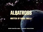 Albatross Picture Of Cartoon
