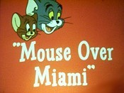 Mouse Over Miami Cartoon Picture