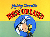 Horse Collared Cartoon Picture