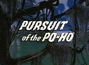 Pursuit Of The Po-Ho The Cartoon Pictures
