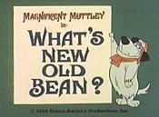 What's New Old Bean? Cartoon Picture