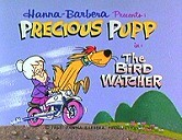 The Bird Watcher Cartoon Pictures