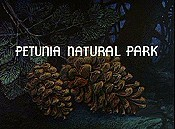 Petunia Natural Park Free Cartoon Picture