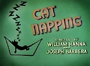 Cat Napping Cartoon Picture