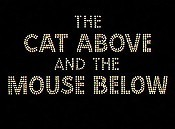 The Cat Above And The Mouse Below Cartoon Picture