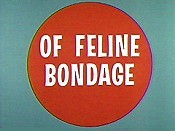 Of Feline Bondage Picture Of The Cartoon