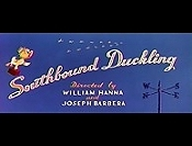 Southbound Duckling Cartoon Character Picture