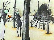 Blackfly Cartoon Picture