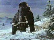 Woolly Mammoth Cartoon Picture