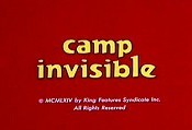 Camp Invisible Cartoon Character Picture