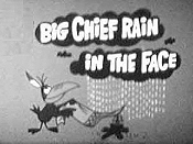 Big Chief Rain In The Face Picture Of The Cartoon