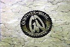 Gunther-Wahl
