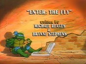 Enter The Fly Cartoon Picture