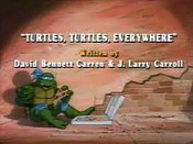 Turtles, Turtles, Everywhere The Cartoon Pictures