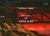 Turtle Trek Cartoon Picture