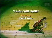 Usagi Come Home Cartoon Character Picture