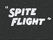 Spite Flight Picture Into Cartoon