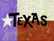 Texas Picture Into Cartoon