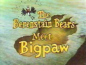 The Berenstain Bears Meet Bigpaw Cartoon Character Picture