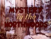 Mystery In The Northwoods Picture Of Cartoon