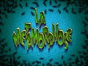 La M�tamorphose (Metamorphosis) Picture To Cartoon