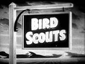 Bird Scouts Free Cartoon Picture