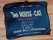 The House-Cat Picture Into Cartoon