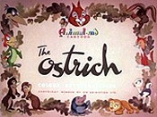 The Ostrich Pictures To Cartoon