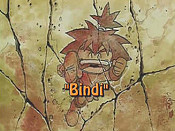 Bindi Unknown Tag: 'pic_title'