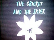 Cvrcek A Pavouk (The Cricket And The Spider) Picture Of The Cartoon
