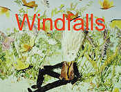 Winter In Windfall Land Cartoon Picture