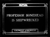 Professor Bonehead Is Shipwrecked